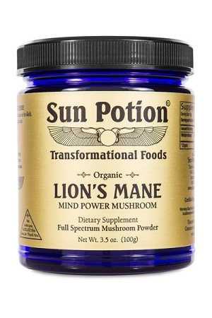 Lion's Mane Mushroom Powder - Organic, 100g - Sun Potion